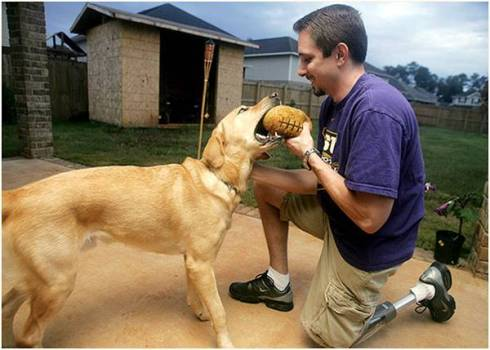 Veteran Amputee with Yellow Lab