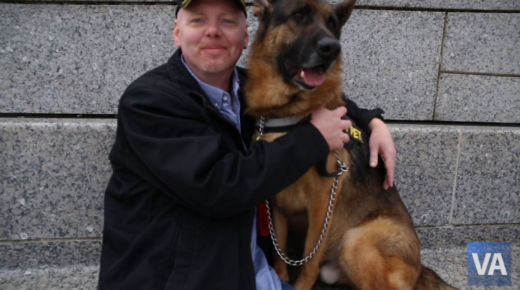 Volunteers needed: VA to study benefits of service dogs, emotional support dogs for Veterans