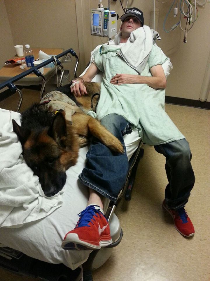 Dog on bed with Veteran