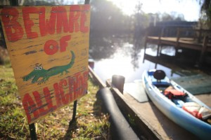 Veterans kayak on the hillsborough river