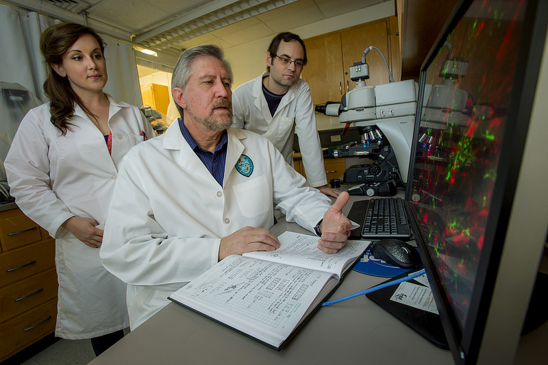Pictured above, Dr. James Zadina's VA-Tulane team tests a drug that may be a safer alternative to opioid painkillers. (Photo by Paula Burch-Celentano)