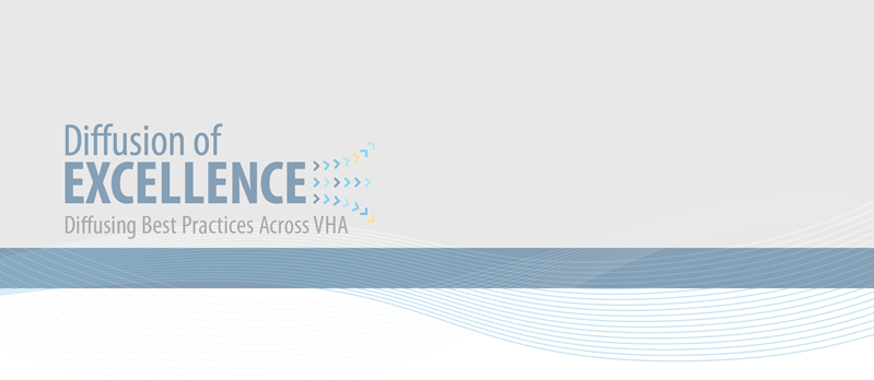VA Diffusion – spreading and implementing best practices to ...