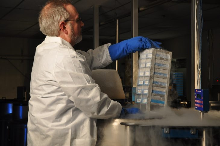 Image of a scientist lifting frozen DNA.