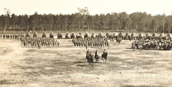Period photograph of Auxiliary Remount Number 333