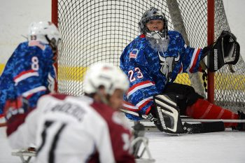 veteran playing goaltender in sled hockey