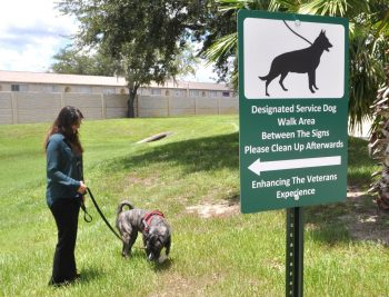 designated service dog area at the tampa va