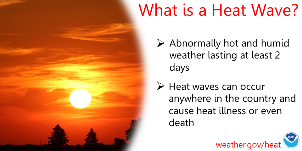 Heatwaves Will Be As Deadly As Diseases Globally — Should We Name Them To Raise Awareness?