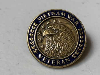 Vietnam War Veterans pin