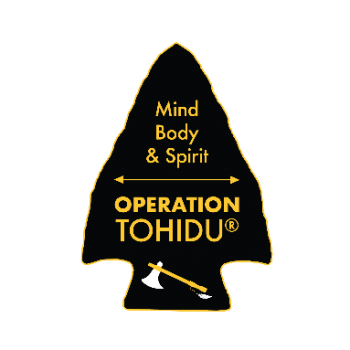 arrowhead graphic for operation tohidu